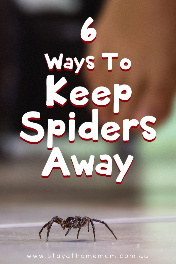 how to keep spiders away while sleeping-1