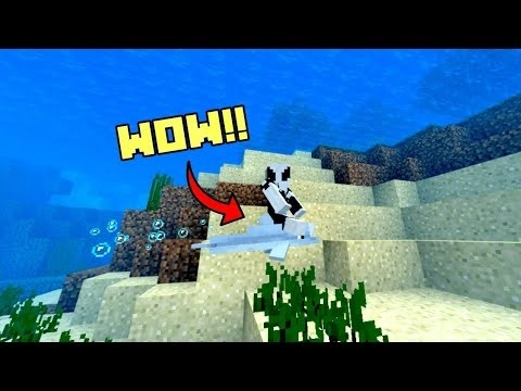 how to ride a dolphin in minecraft-1