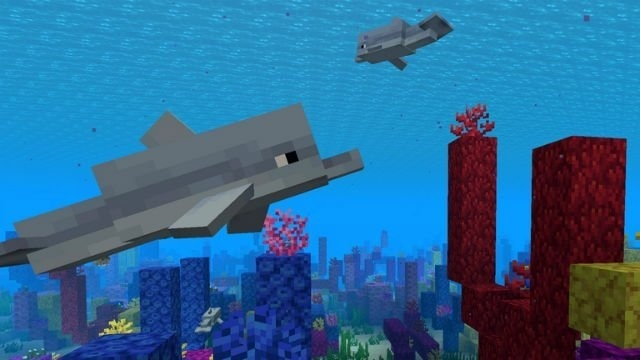 how to ride a dolphin in minecraft-3