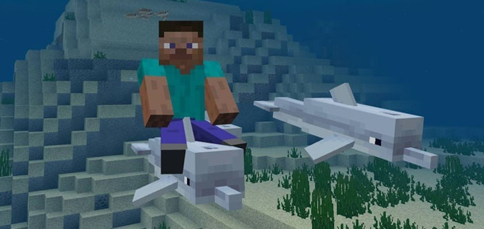 how to ride a dolphin in minecraft-4