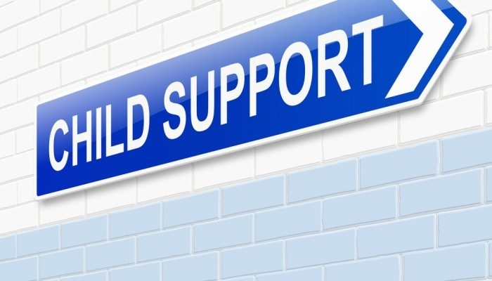 how to stop child support from suspending your license-1